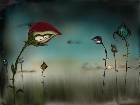 """""""Solito y el bosque de la luz"""" de nuestra coworker Sabina"""